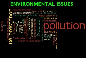 Environmental-Issues4